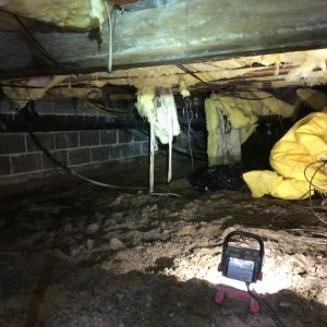 crawl space cleanup