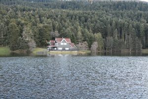Home on a lake if it floods call water damage restoration company
